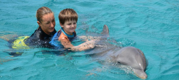 Delfinschwimmen